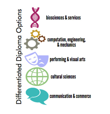 Differentiated diploma allows choice