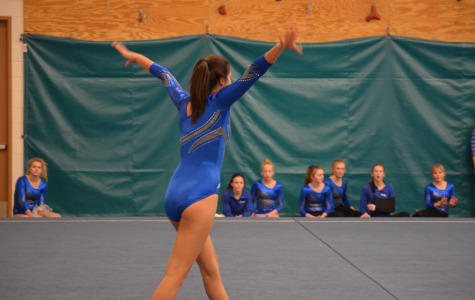 Gymnastics stands above the rest
