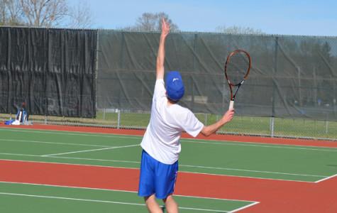 Johnson advances to state tournament
