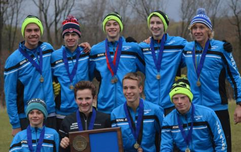 Runners excel at sections, qualify for state meet