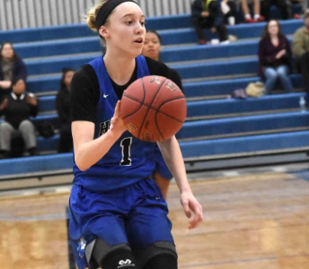 Girls basketball preview: Sections