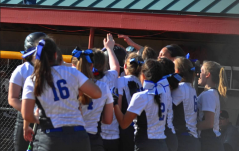 Softball: Preview of Rosemount
