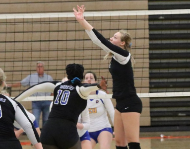 Preview: Volleyball takes on Roseville