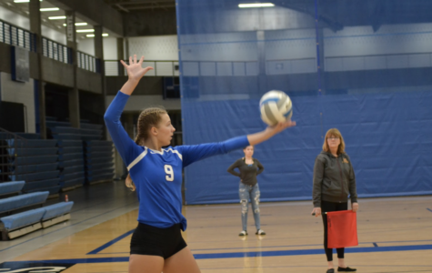 Volleyball falls short to Skippers in four sets