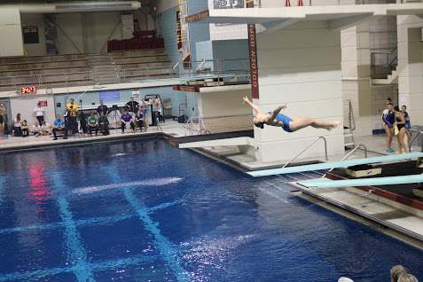 Gallery: State Diving Championship