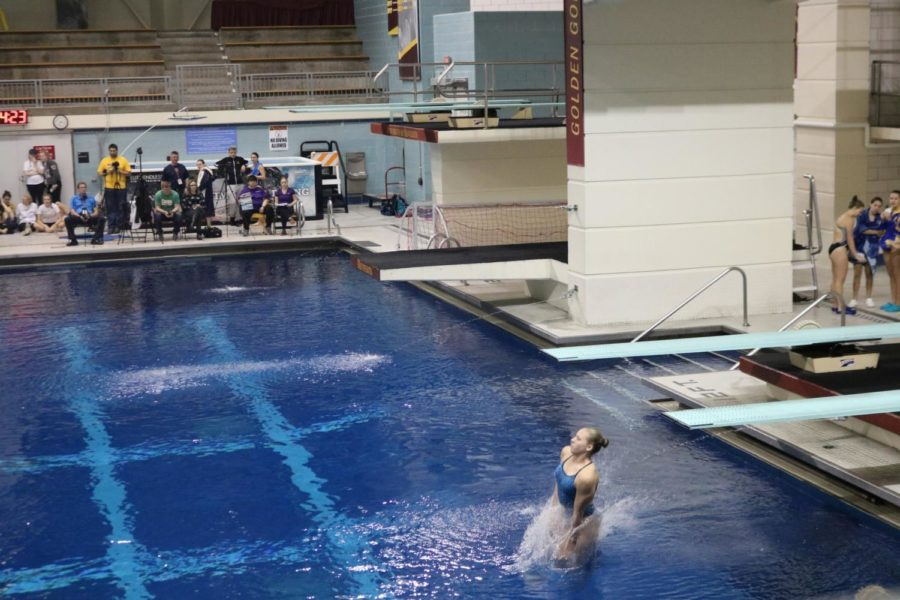 Susanna+Fish%2C+sophomore%2C+competes+in+the+MSHSL+state+diving+championship.+