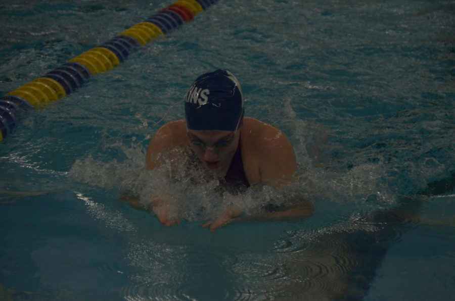 Alison Hall, sophomore, swims the 100 yard breaststroke at the Section 5AA Prelims meet at the Plymouth Lifetime Fitness. Hall qualified for the section finals meet with the second-place seed, swimming a time of 1:07.05.
