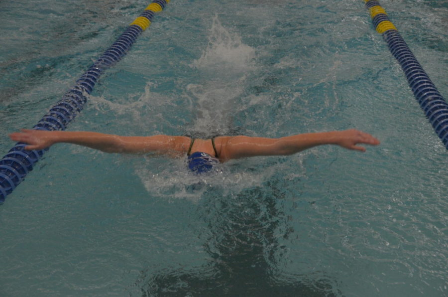 Hannah Sherman, junior, swims the butterfly during her 200 yard IM. Sherman qualified for the section finals meet in the fourteenth-place seed, swimming a time of 2:24.59.