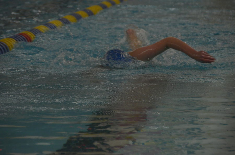 Samantha Horowitz, senior, swims the 200 freestyle at the section prelims meet.