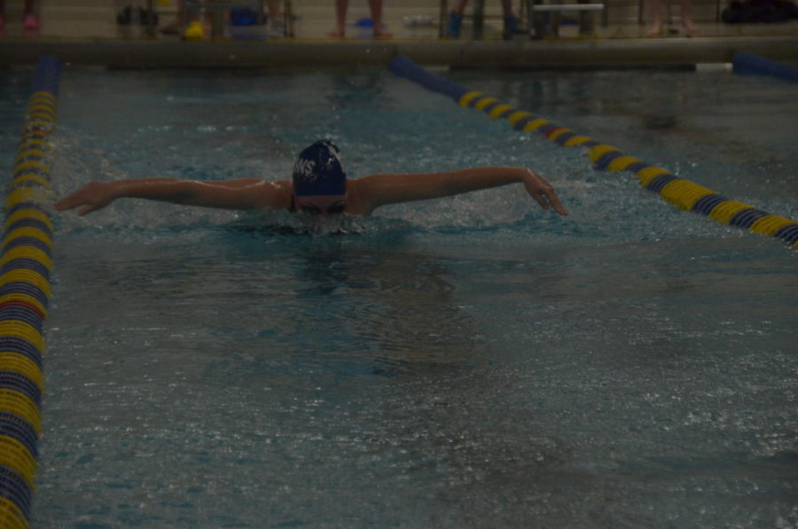 Willow Scherwinski, senior, swims the 100 yard butterfly.