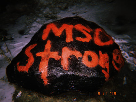 Students paint the Rock in solidarity with Marjory Stoneman Douglas High School