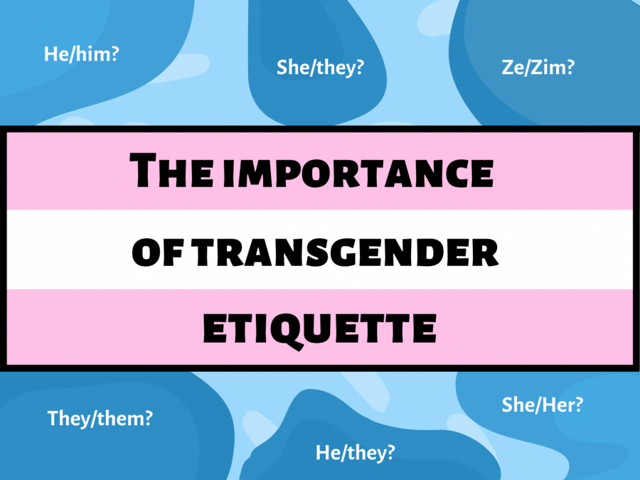 Elliot Page and the importance of accepting pronouns
